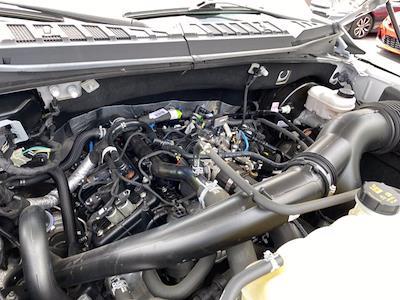 2019 F-150 SuperCrew Cab 4x2,  Pickup #M47413A - photo 17