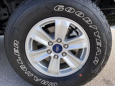 2020 F-150 SuperCrew Cab 4x4,  Pickup #SA21247 - photo 13