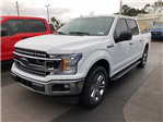 2018 F-150 SuperCrew Cab 4x2,  Pickup #JFB96044 - photo 4