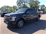2018 F-150 SuperCrew Cab 4x2,  Pickup #JFC60413 - photo 4