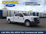 2020 Ford F-250 Crew Cab 4x2, Pickup #LEE96872 - photo 7