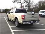 2018 F-150 SuperCrew Cab, Pickup #FA41003 - photo 3