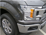 2018 F-150 SuperCrew Cab 4x2,  Pickup #FB78942 - photo 5
