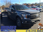 2018 F-150 Crew Cab 4x4 Pickup #T80459 - photo 1