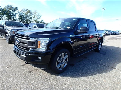 2018 F-150 Crew Cab 4x4 Pickup #FJ0479 - photo 1