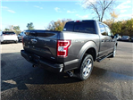 2018 F-150 Crew Cab 4x4, Pickup #FJ0676 - photo 5