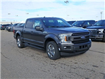 2018 F-150 Crew Cab 4x4, Pickup #FJ0713 - photo 3
