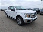 2018 F-150 Crew Cab 4x4, Pickup #FJ1166 - photo 3