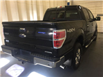 2014 F-150 Super Cab 4x4 Pickup #17P412 - photo 2