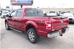 2018 F-150 Crew Cab 4x4 Pickup #8250622 - photo 2