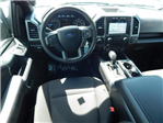 2018 F-150 SuperCrew Cab 4x4,  Pickup #JKE39545 - photo 3