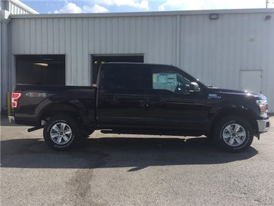 2018 F-150 Crew Cab 4x4 Pickup #27748 - photo 6