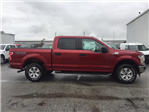 2018 F-150 Crew Cab 4x4, Pickup #27831 - photo 6