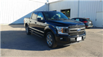 2018 F-150 SuperCrew Cab 4x4,  Pickup #28445 - photo 6