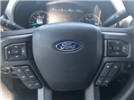 2018 F-250 Crew Cab 4x4,  Pickup #29196 - photo 14