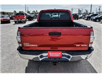 2009 Tacoma Double Cab Pickup #9M021339A - photo 12