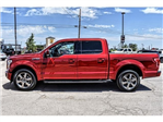 2016 F-150 SuperCrew Cab 4x2,  Pickup #GKF03926P - photo 7