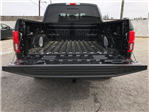 2018 F-150 SuperCrew Cab 4x2,  Pickup #JFC38634 - photo 11
