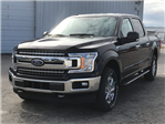 2018 F-150 Crew Cab 4x4 Pickup #JKD24599 - photo 5