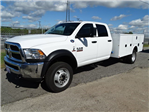 2017 Ram 4500 Crew Cab DRW, Commercial Truck & Van Equipment Service Body #HG541509 - photo 1