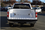 2018 F-150 SuperCrew Cab 4x4, Pickup #F18092 - photo 15
