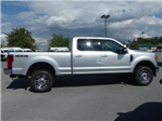 2017 F-250 Crew Cab 4x4, Pickup #Z178399 - photo 4