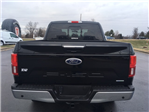 2018 F-150 SuperCrew Cab 4x4, Pickup #57547 - photo 7