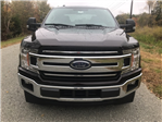 2018 F-150 Crew Cab Pickup #188218 - photo 9