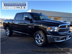 2018 Ram 1500 Crew Cab, Pickup #218161 - photo 6