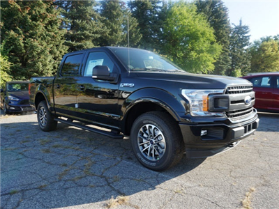2018 F-150 Crew Cab 4x4 Pickup #IXX0166 - photo 4