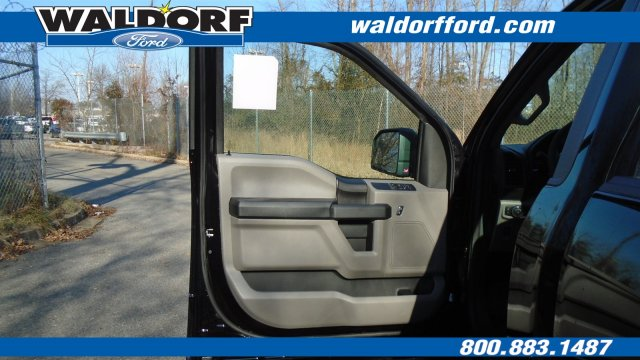 2019 F-150 Regular Cab 4x2,  Pickup #WK5311 - photo 12