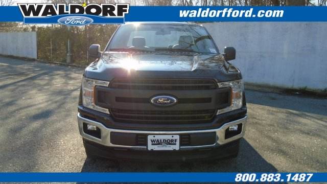2019 F-150 Regular Cab 4x2,  Pickup #WK5311 - photo 8