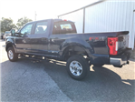 2017 F-250 Crew Cab 4x4 Pickup #H7486 - photo 5