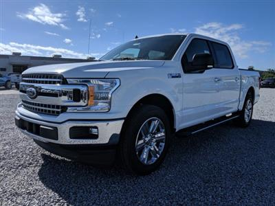 2019 F-150 SuperCrew Cab 4x2,  Pickup #K1336 - photo 5