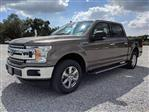 2019 F-150 SuperCrew Cab 4x2,  Pickup #K3125 - photo 3