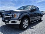 2019 F-150 SuperCrew Cab 4x2,  Pickup #K3242 - photo 3