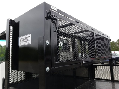 2018 NPR Regular Cab,  Cadet Grassmaster Dovetail Landscape #Z00223 - photo 8