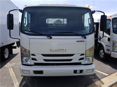2018 NPR Regular Cab,  Conyers Dovetail Landscape #Z00227 - photo 10