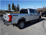 2017 F-250 Crew Cab 4x4 Pickup #SF28762 - photo 2
