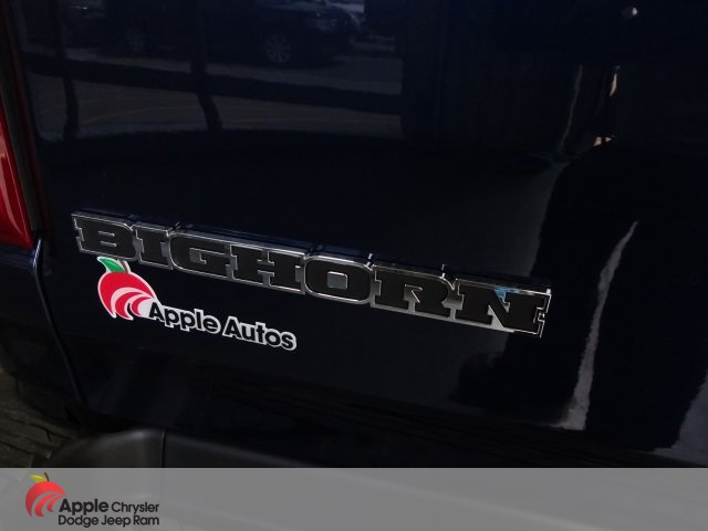 2020 Ram 1500 Crew Cab 4x4, Pickup #D4240 - photo 10