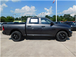 2018 Ram 1500 Crew Cab 4x4,  Pickup #180866 - photo 10