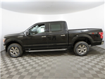 2018 F-150 Crew Cab 4x4 Pickup #T80024 - photo 5