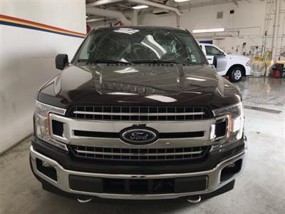 2019 F-150 SuperCrew Cab 4x4,  Pickup #F10636 - photo 3