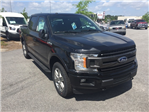 2018 F-150 SuperCrew Cab 4x4,  Pickup #JKD77473 - photo 3
