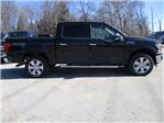 2018 F-150 SuperCrew Cab 4x4, Pickup #F180197 - photo 10