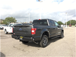 2018 F-150 Crew Cab 4x4, Pickup #VQ054 - photo 2