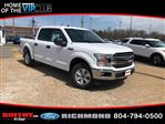 2019 F-150 SuperCrew Cab 4x2,  Pickup #NB43920 - photo 3