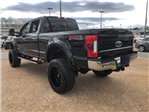 2018 F-250 Crew Cab 4x4,  Pickup #NB68074 - photo 6