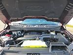 2021 F-150 SuperCrew Cab 4x4,  Pickup #NC92653 - photo 10
