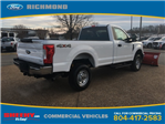 2017 F-250 Regular Cab 4x4, Pickup #NF50824 - photo 4